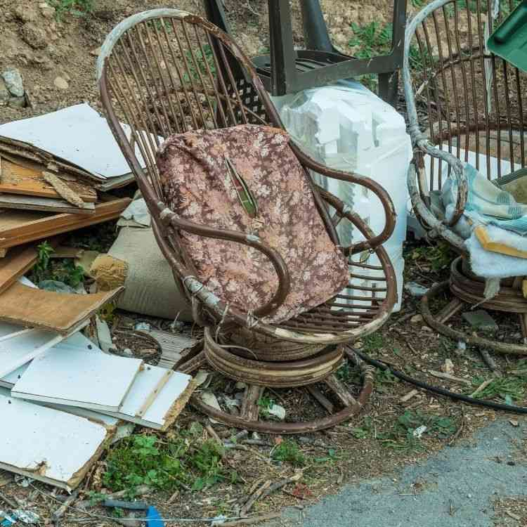 Rubbish removal brisbane, Garden cleanups, Just clear